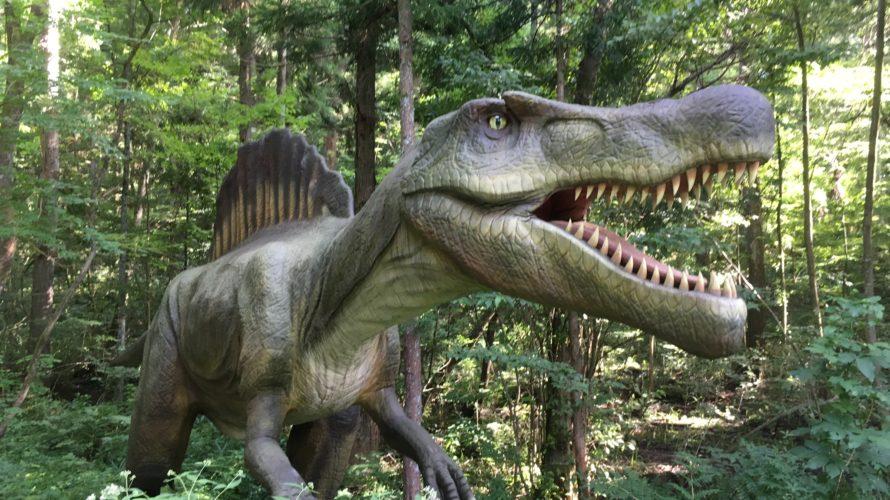 福井県立恐竜博物館へ行ってきました♪ 2