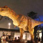 「291」・・・?あ、291(ニクい)じゃなくて・・・何度行っても感動!福井県立恐竜博物館へ!|日本一周11日目(1/3)